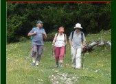 Les boucles de randonnée pédestre autour des sites clunisiens