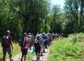 4 dépliants pour randonner dans le Jura et le Doubs